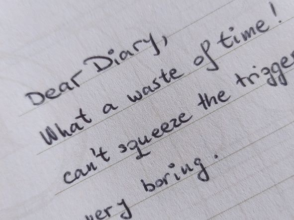 Dear diary entry about shooting